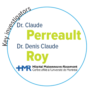 perreault-roy-enabling-name